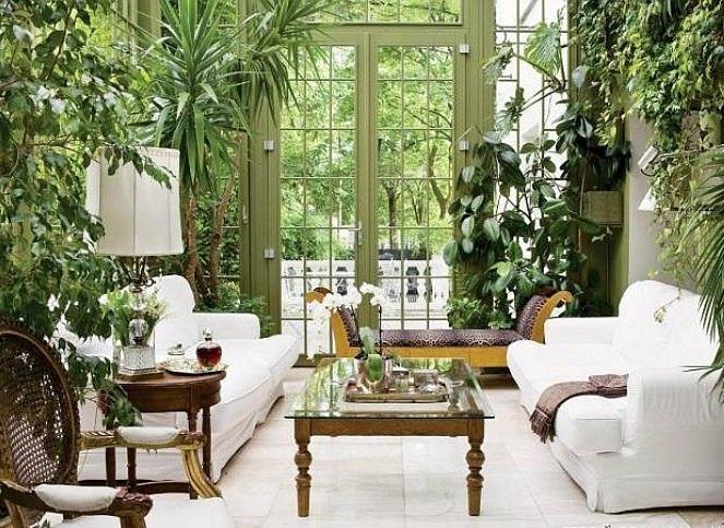 تزیین خانه با گیاهان آپارتمانی , زیباسازی محیط منزل با گلدان