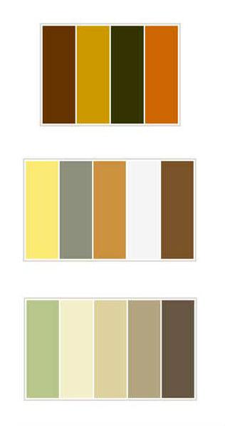 ترکیب رنگ های مناسب با رنگ قهوه ای,ست کردن رنگ لباس,انتخاب رنگ لباس