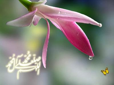 کارت تبریک مبعث پیامبر اکرم (ص) , کارت پستال بعثت پیامبر
