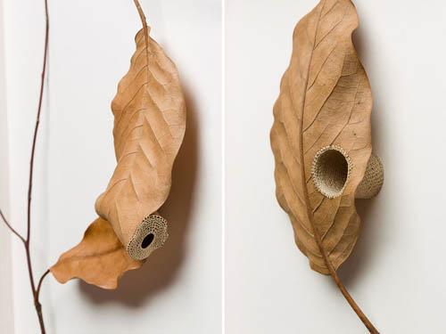 قلاب بافی برگ درختان توسط سوزانا بائر