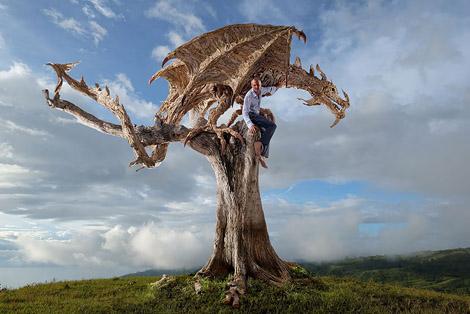 driftwood-dragon-sculptures-james-doran-webb-3