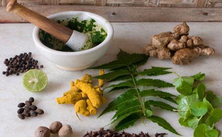داروهای گیاهی برای تاخیر در پریود