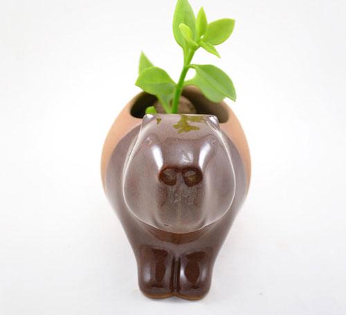 گلدان سرامیکی به شکل حیوان اثر هنرمند برزیلی