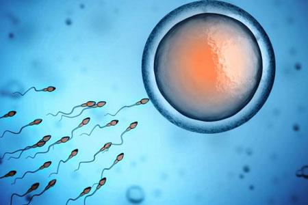 سلامت اسپرم - عوامل موثر بر ناباروری مردان