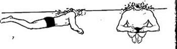 آموزش تصویری شنای قورباغه, آموزش انواع شنا
