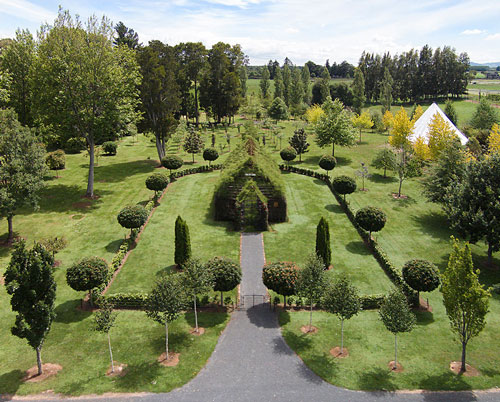 tree-church-nature-installation-barry-cox-new-zealand-3