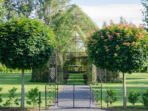 tree-church-nature-installation-barry-cox-new-zealand-1
