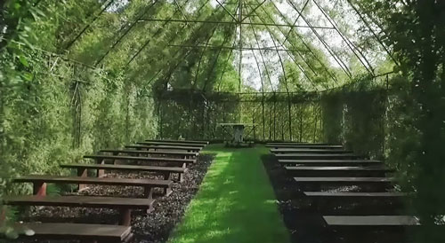 tree-church-nature-installation-barry-cox-new-zealand-8