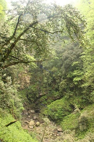 آبشار زیبای گزو در جنگل لفور سوادکوه