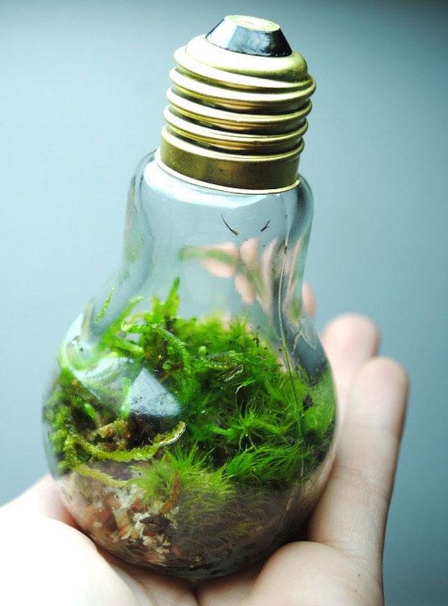 بازیافت لامپهای سوخته