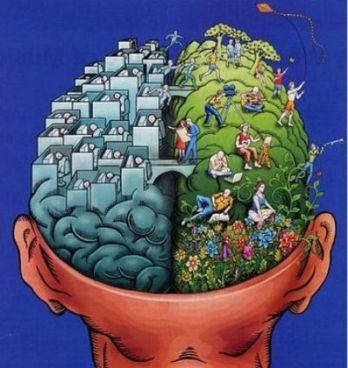 چگونه مغز خود را فعال نگه داریم