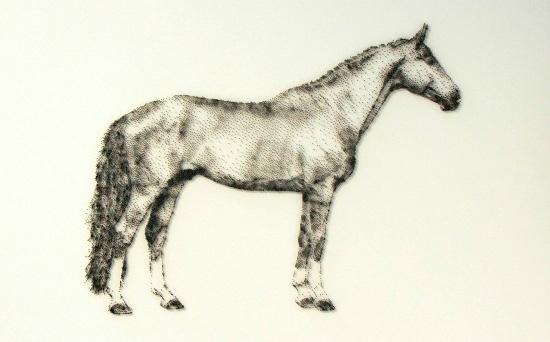 خلق پرتره های زیبا با میخ توسط دیوید فاستر