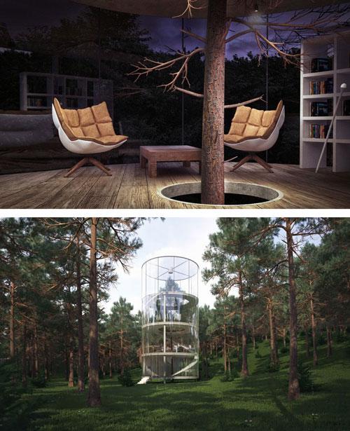 ساختمان سازی اطراف درخت