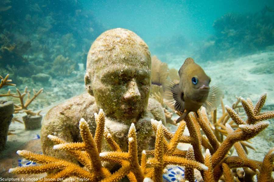 تصاویر دیدنی از کانکون موزه مجسمه های زیر آب