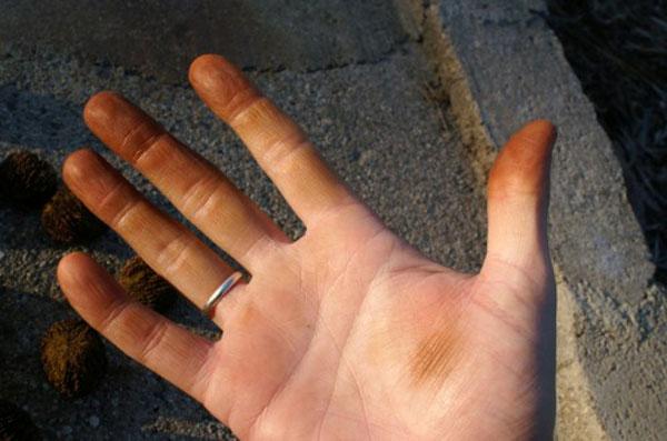 نحوه پاک کردن انواع لکه روی دست - پاک کردن لکه گردو