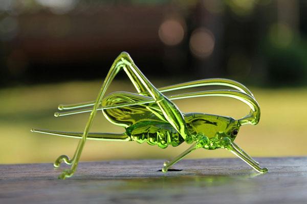 حشره های شیشه ای اثر هنرمند اوکراینی Nikita Drachuk