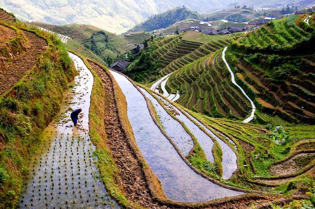 دیدنی های کشور چین - مکانهای شگفت انگیز چین