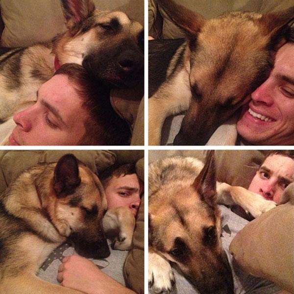 عکس های خنده دار - سگ های بامزه