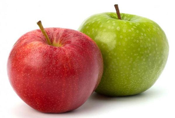 نگهداری سبزیجات - نگهداری میوه ها