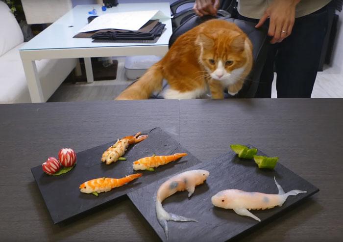 سوشیهای هنری هنرمند ژاپنی