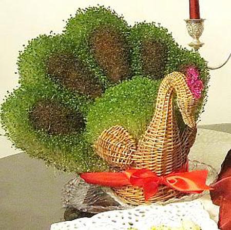 سبزه شکل طاووس , درست کردن سبزه عید , سبزه هفت سین
