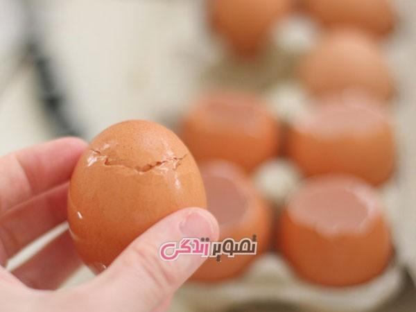 سبز کردن سبزه داخل پوست تخم مرغ