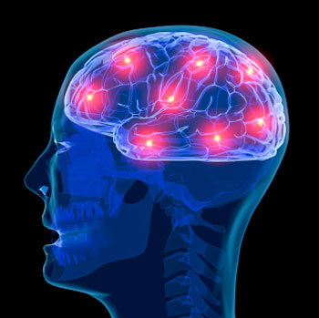 اخبار علمی و پژوهشی  , اثرات پیری بر فعالیت های مغز
