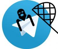 ریپورت, رفع مشکل اسپم تلگرام , ارسال نشدن پیام , telegram spam