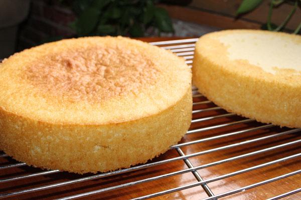 مقیاس پخت کیک اسفنجی + نکات
