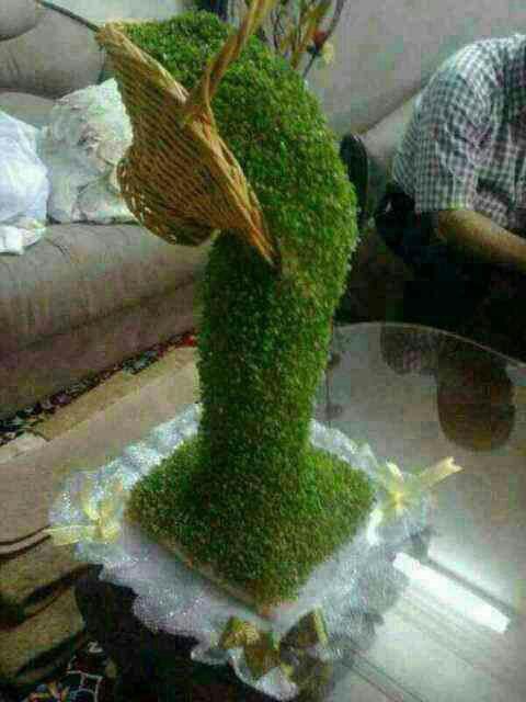 کاشت سبزه با کنجد سبزه آبشاری بسازید / هفت سین آبشاری • مجله تصویر زندگی