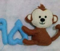 میمون نمدی , سال میمون