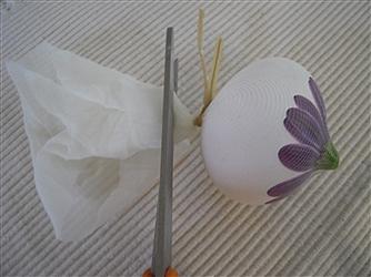 رنگ کردن تخم مرغ با مواد طبیعی