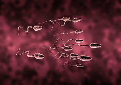 بارداری و زایمان  , ناباروری : علل و روش های درمان