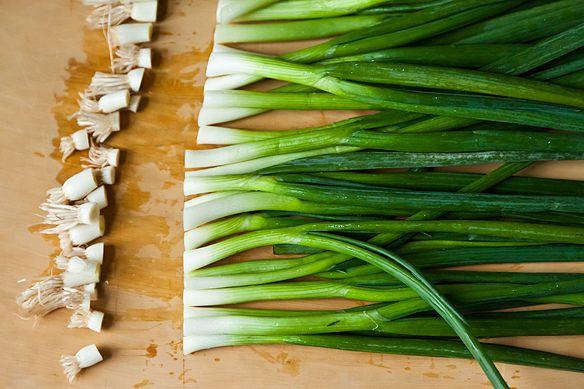 تغذیه  , عضله سازی با خوردن گیاهان