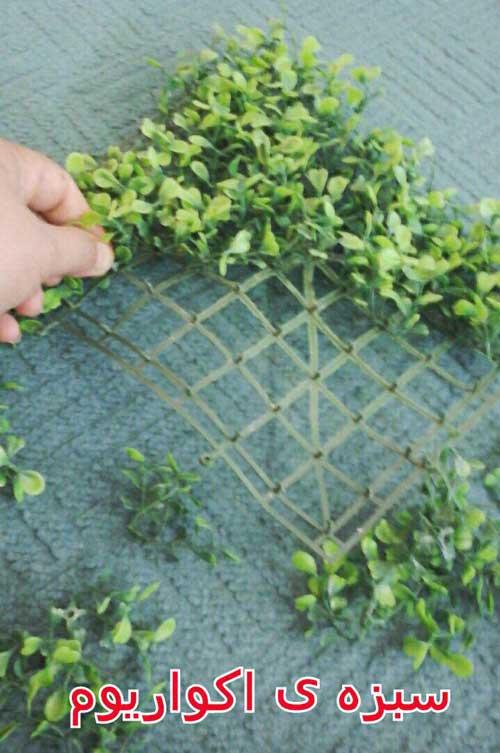 ساخت درختچه تزیینی گرد