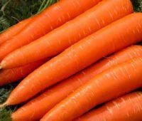 خواص درمانی هویج, فواید هویج