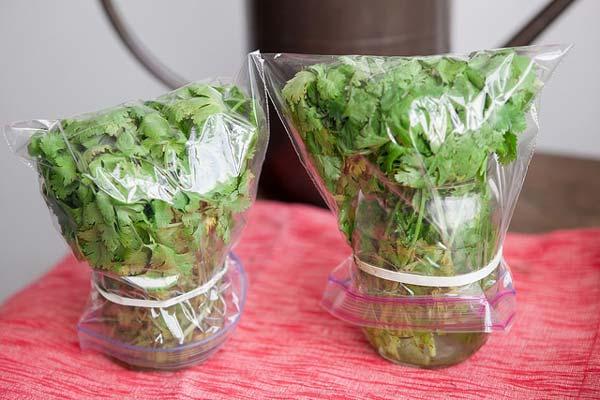 تازه نگهداشتن سبزی