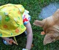 آموزش دوخت کلاه دخترانه پارچه ای
