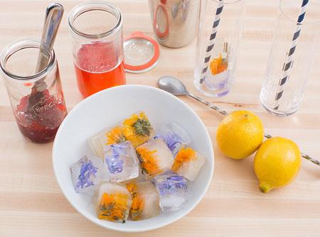 تزیین یخ برای شربت, تزیین یخ قالبی