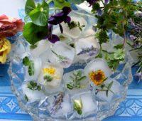 طرز تزیین کردن یخ با سبزیجات,تزیین یخ با گل و میوه های تابستانی