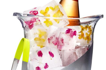 تزیین یخ با گل و میوه های تابستانی,مدل های تزیین یخ