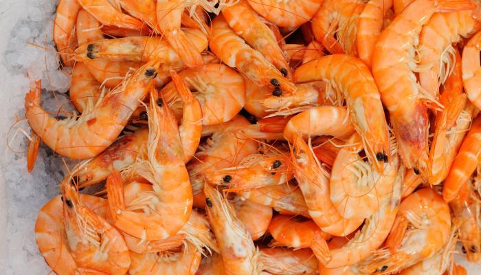میگو , Shrimp