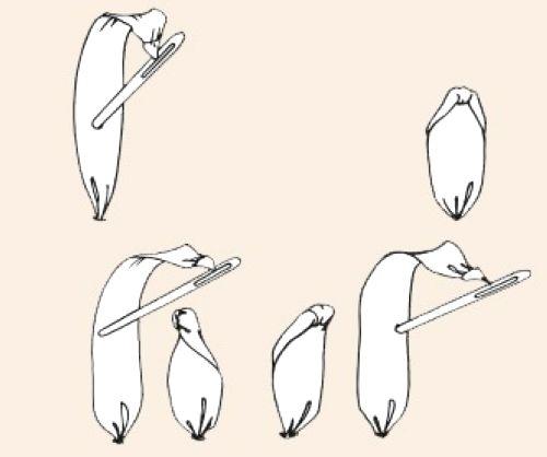آموزش هنرهای دستی  , آموزش دوخت رز روبانی کوچک / آموزش روبان دوزی