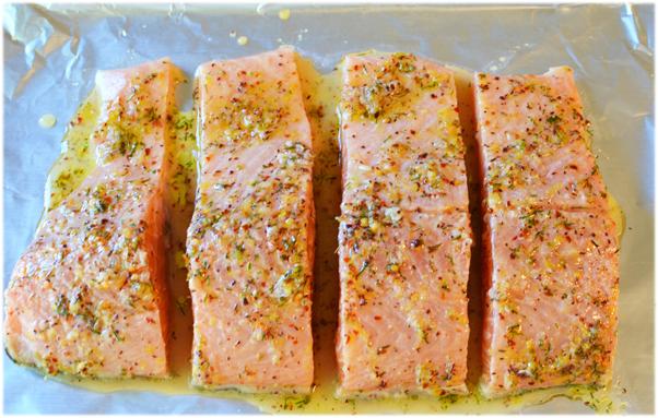 ماهی سالمون با سس خیار تزتیک