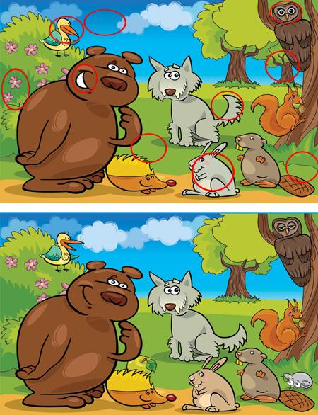 اختلاف تصاویر سخت , بازی اختلاف بین دو تصویر