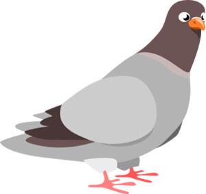 تست هوش ریاضی , انواع تست هوش - تست هوش پرواز کبوتر با جواب