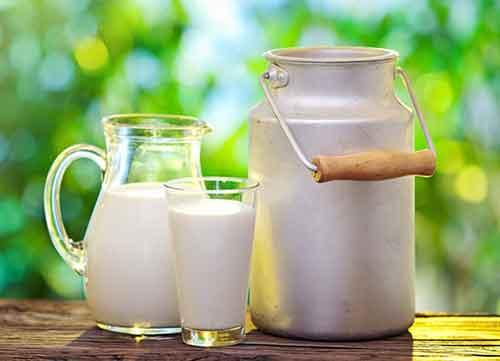 تداخل دارو با غذا شیر و لبنیات