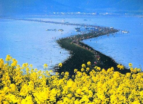 شکافته شدن دریا در کره - جاده جیندو در کره