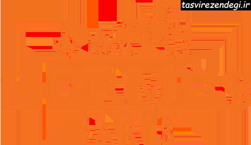 برند Hermes