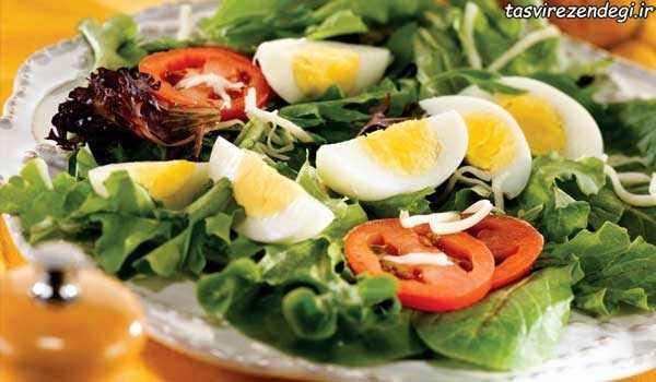 کاهش وزن با خوردن تخم مرغ